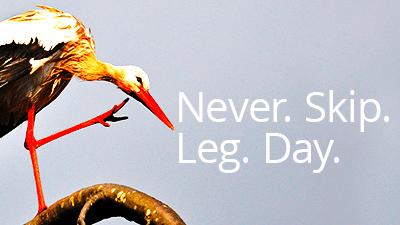#NeverSkipLegDay